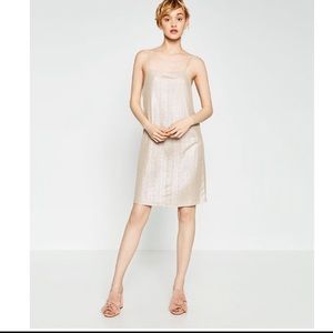 Zara NWT metallic Slid Dress size Large